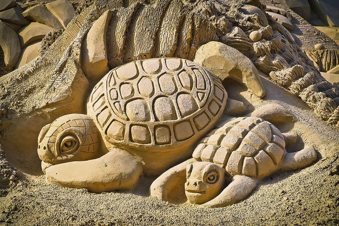 Destin Sandcastle Lessons