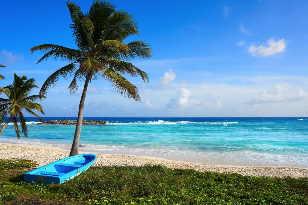 visit cozumel on a day trip from playa del carmen