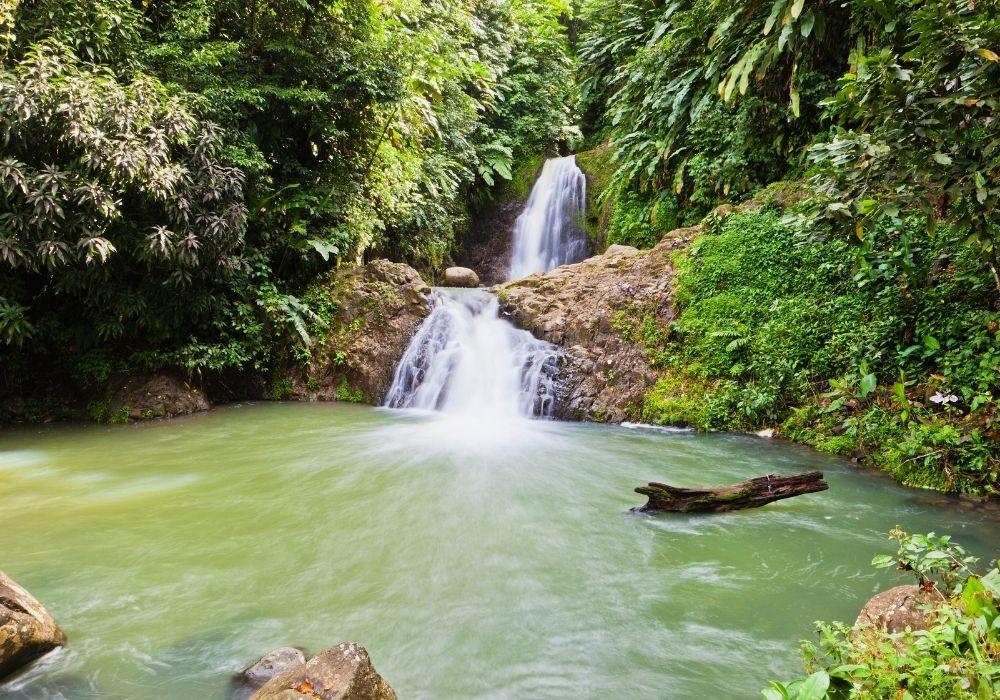 seven sisters waterfalls things to see in grenada
