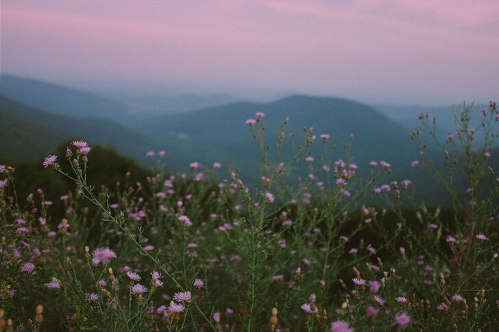 Checklist of Asheville Things to Do // Local Adventurer #northcarolina