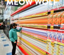 Meow Wolf Las Vegas – What You Need to Know Before You Go
