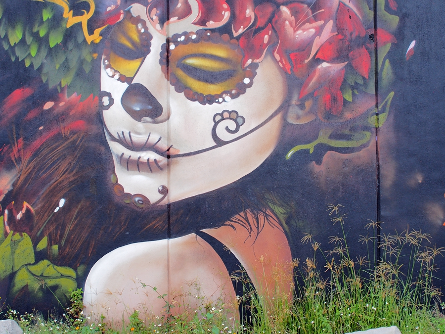 things to do in mexico look at the street art