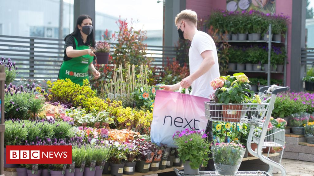 Homebase to put mini-garden centres at Next stores
