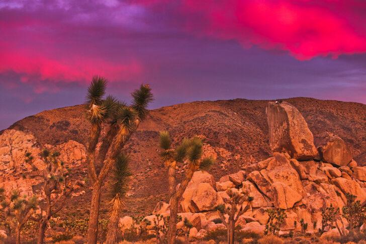 15 Incredible Weekend Getaways from Las Vegas // Local Adventurer #lasvegas #travelnevada #nevada #roadtrip