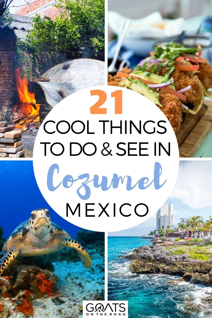 21 Cool Things To Do & See in Cozumel, Mexico