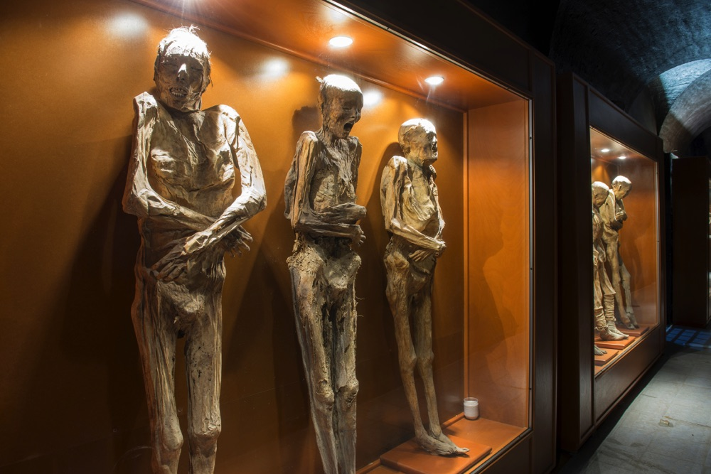 attractions in guanajuato mummies