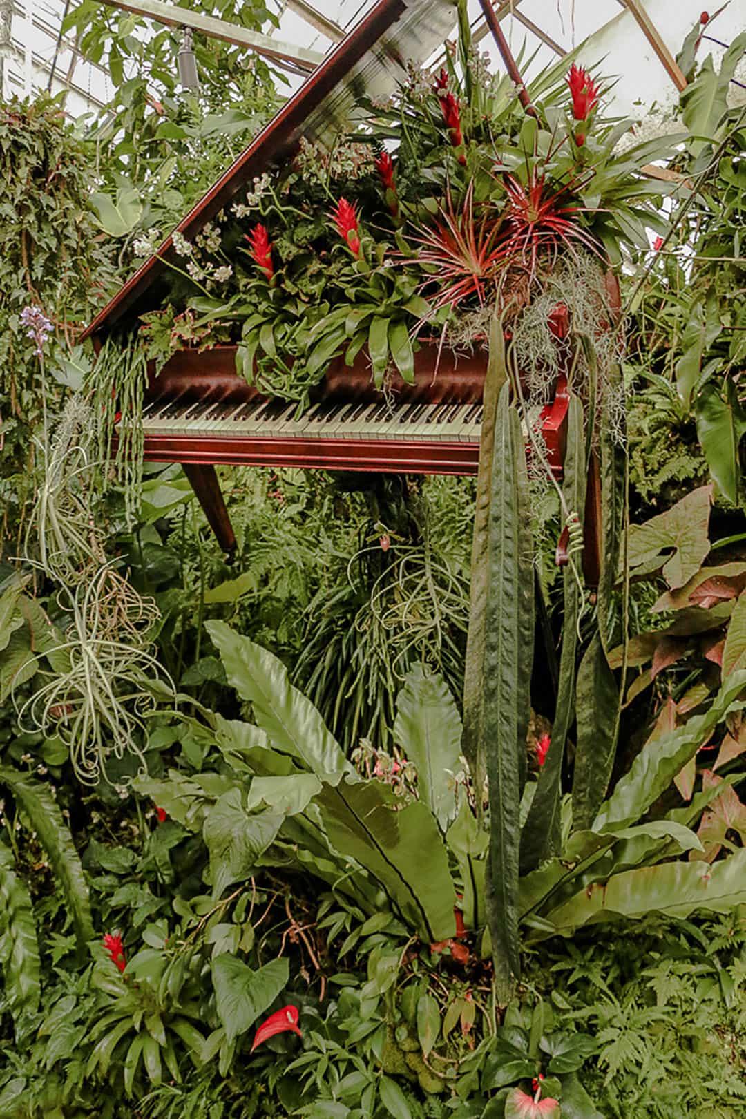 sarasota botanical garden
