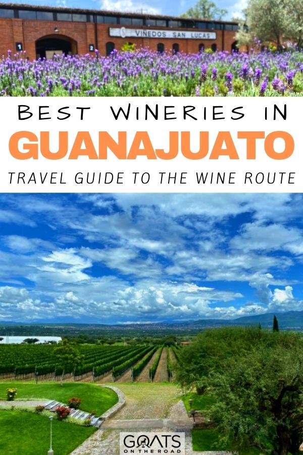 """""""Best Wineries in Guanajuato: Travel Guide to The Wine Route"""