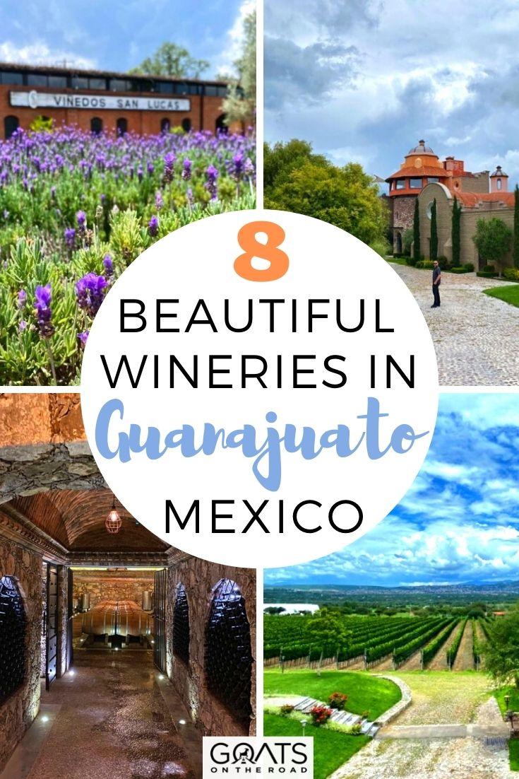 8 Beautiful Wineries in Guanajuato, Mexico