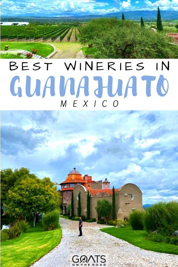 """Best Wineries in Guanajuato, Mexico"