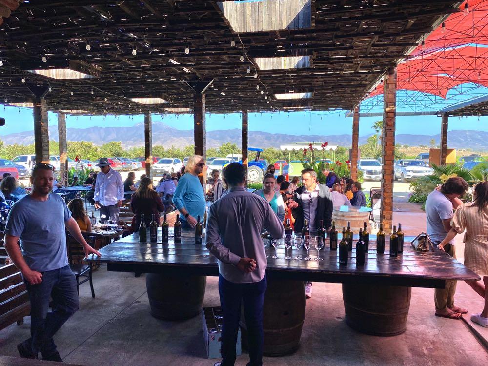 baron balche winery