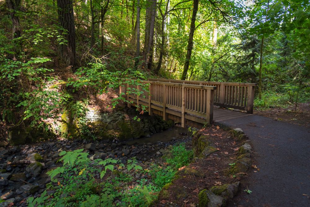 best places to visit in portland forest park
