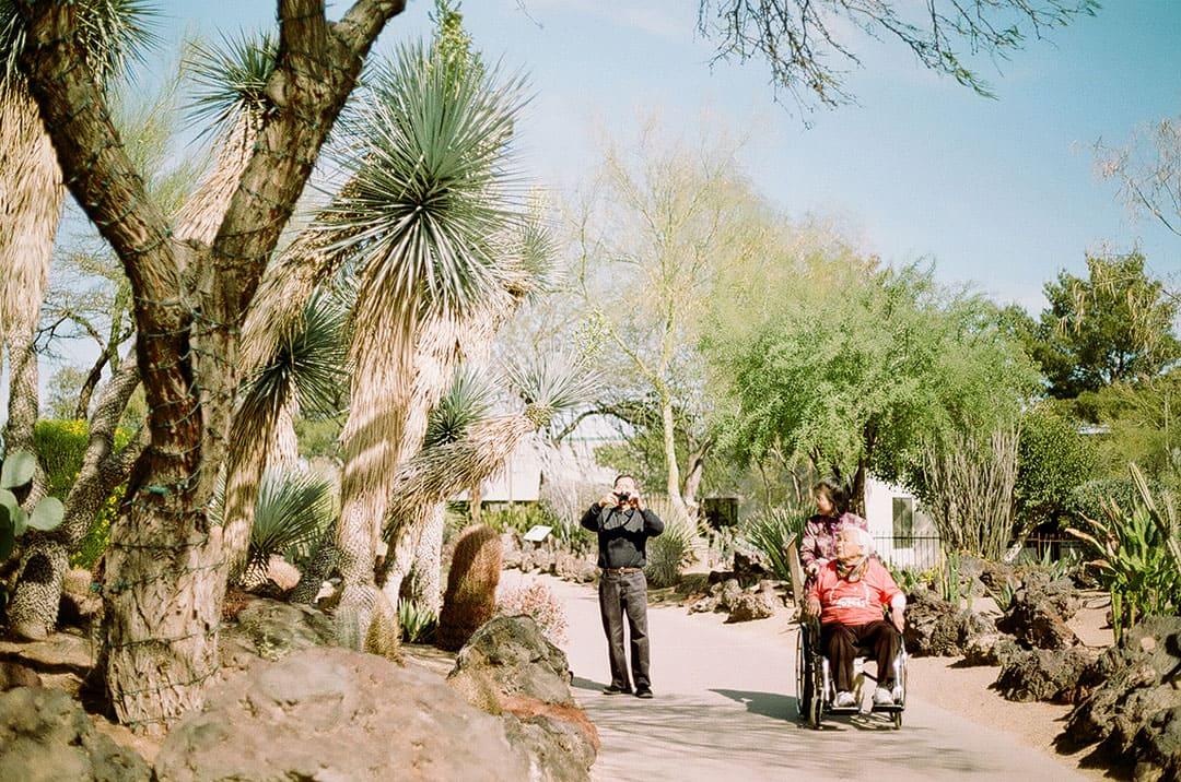 ethel m botanical cactus gardens