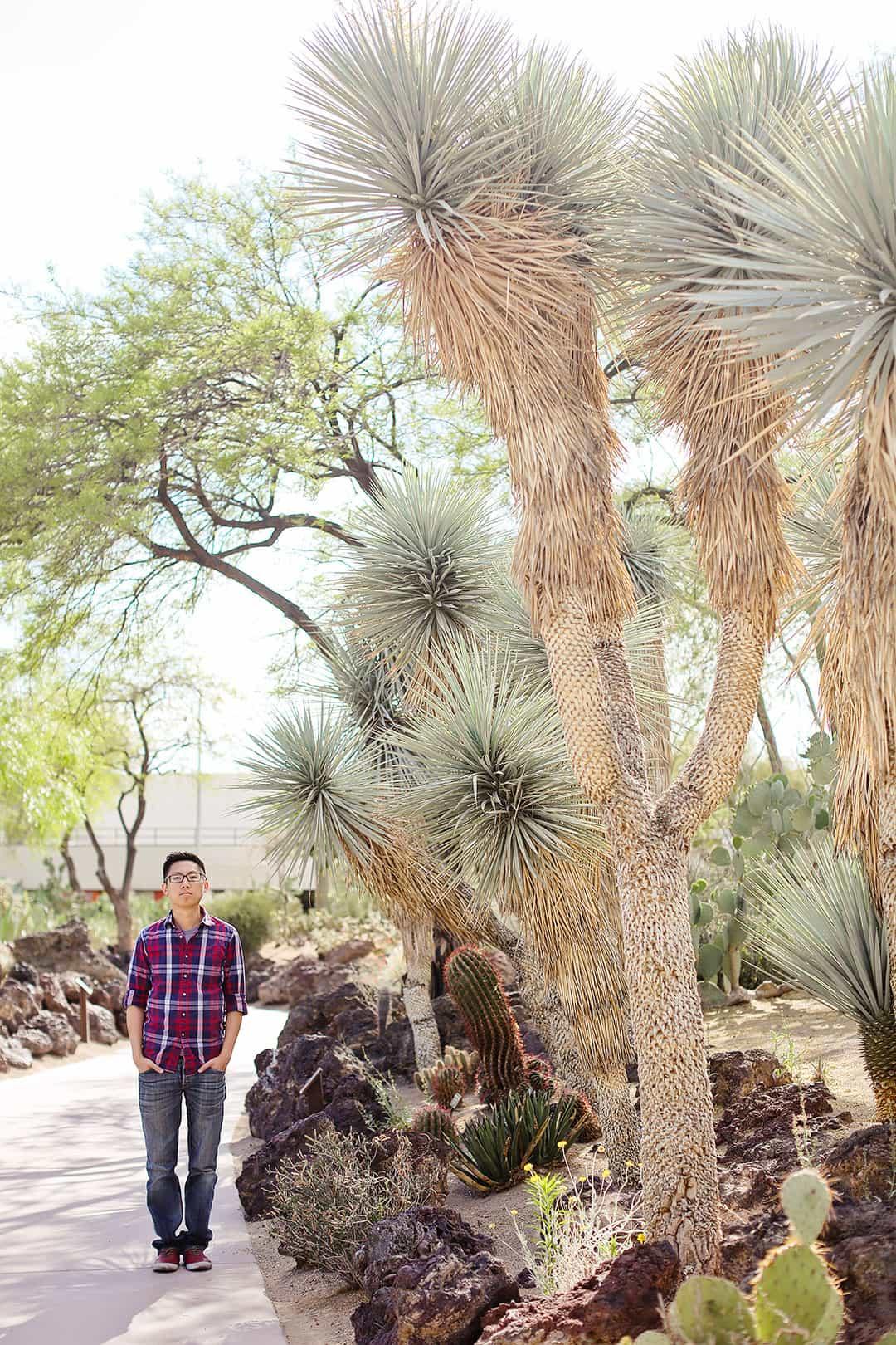 Ethel M Cactus Garden