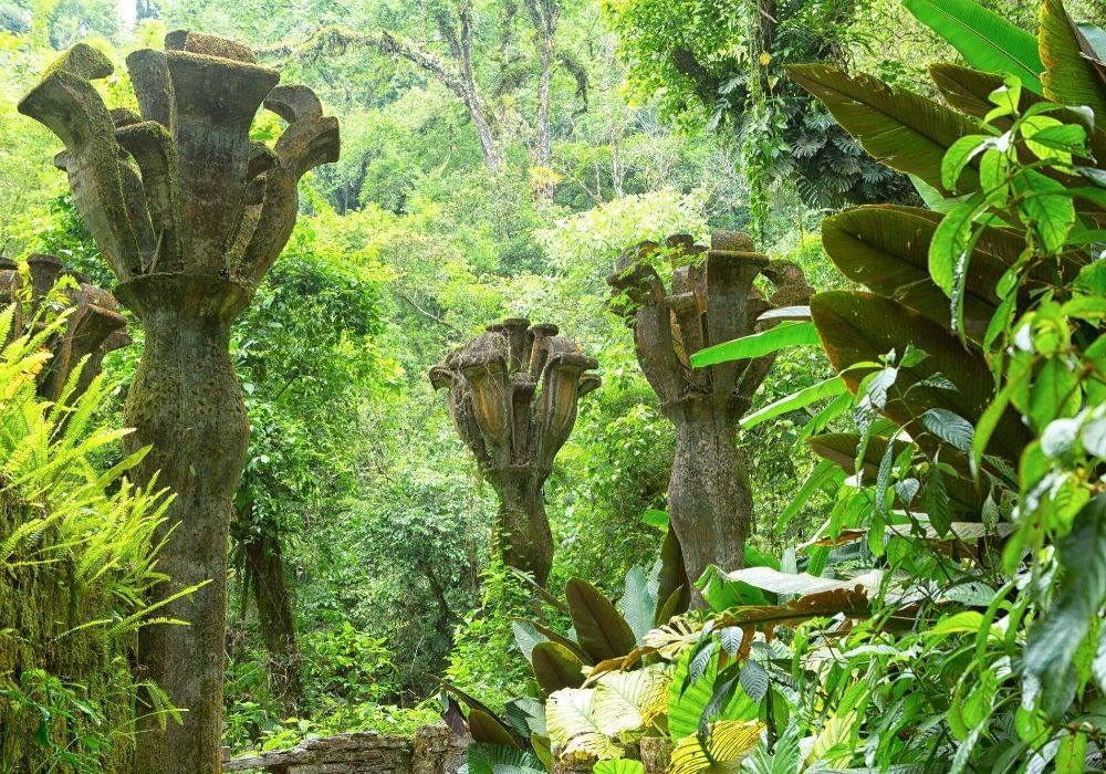 Garden of Las Pozas