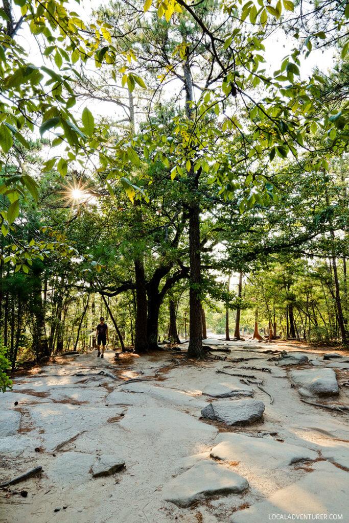 Hiking Stone Mountain Park