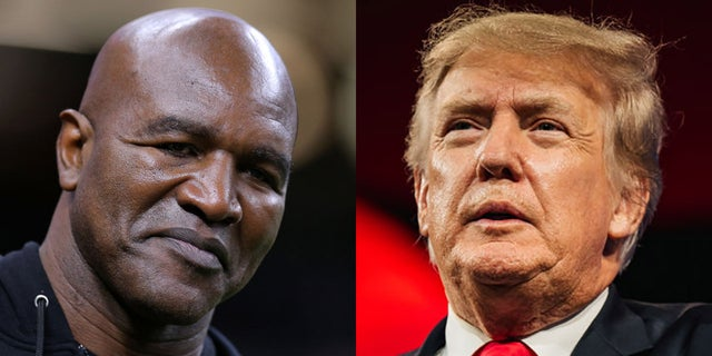 When Evander Holyfield, 58, returns to the ring on Saturday in Hollywood, Florida, former President Donald Trump will be ringside, providing TV commentary. (Getty Images)